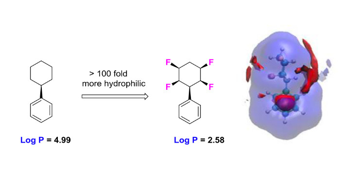 Metabolism and hydrophilicity of the polarised 'Janus face' all-cis tetrafluorocyclohexyl ring, a candidate motif for drug discovery