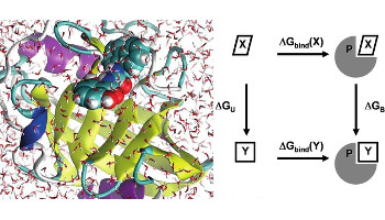 Current and Emerging Opportunities for Molecular Simulations in Structure-Based Drug Design