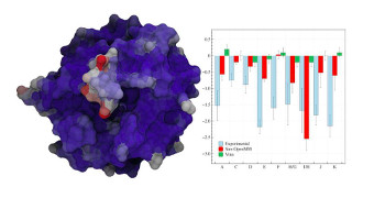 Elucidation of Non-Additive Effects in Protein-Ligand Binding Energies: Thrombin as a Case Study